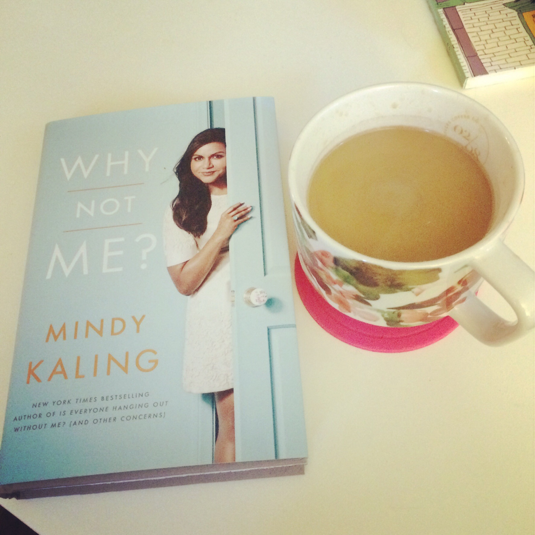 Life Love And The Meaning Of Bookworm Why Not Me By Mindy Kaling